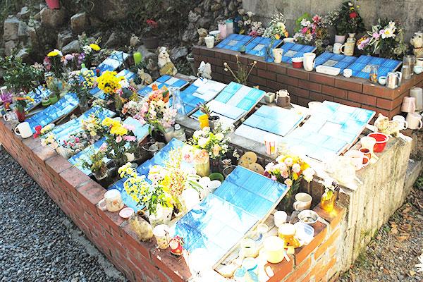 合同埋葬地   神戸市でペット葬儀を行うならペット霊園完備の「にじの ...